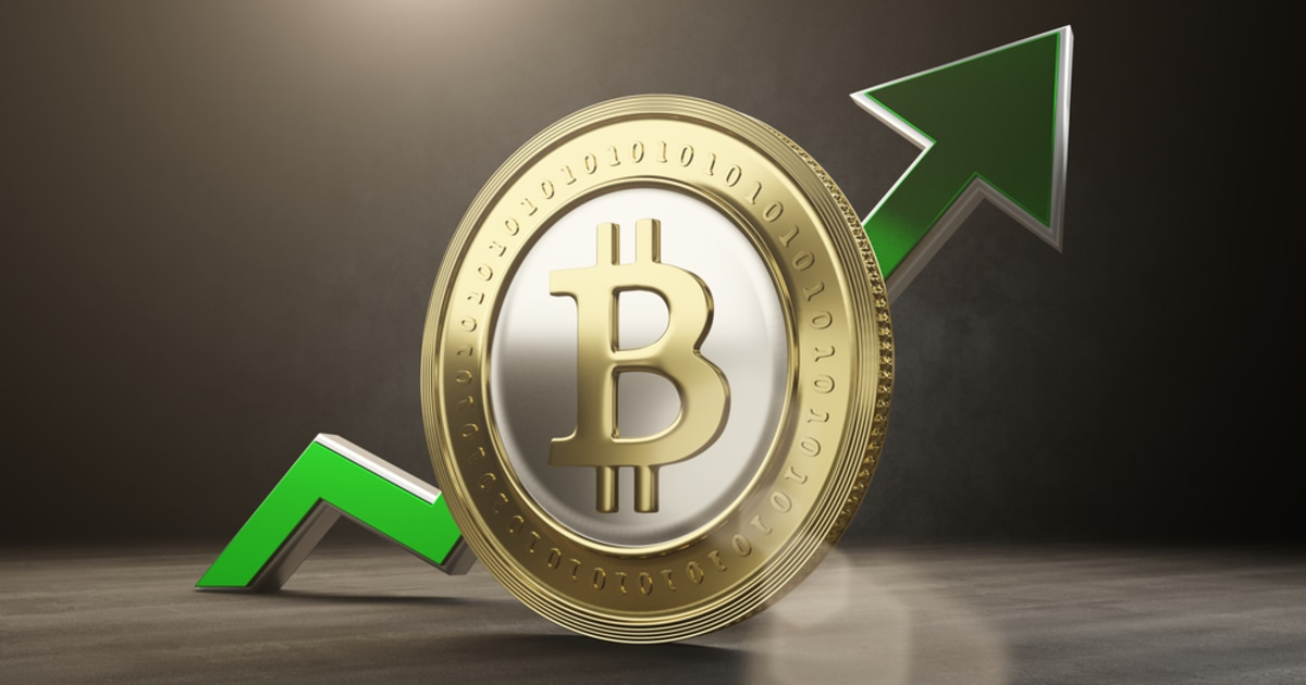 Bitcoin Bulls Buy the Dip as Analytic Firm says BTC Price Recovery is Optimistic