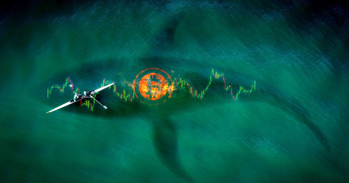 Crypto Whales Moving BTC to Exchanges Sees Bitcoin Price Bounce at $17,250