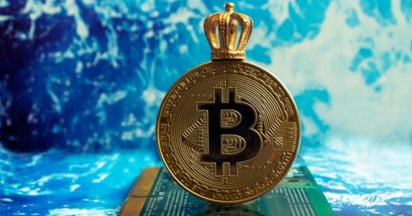 Bitcoin's Price Remains Stable Despite Crypto Market Crash, BTC Matures into a Less Volatile Asset