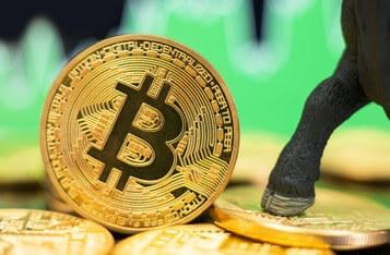 Calculator pentru Bitcoins (BTC) Schimb valutar Rata de conversie