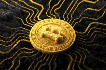 Bitcoin Surges Past $24,000 for the First Time, Market Analysts Predict What's Next for BTC