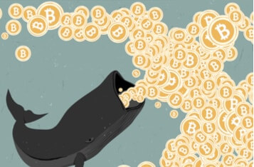 Why Bitcoin's Price Is Rising Despite Selling Pressure from Crypto Whales