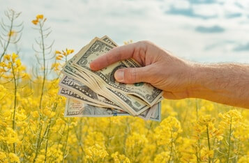 Vitalik Buterin Sceptical About DeFi Yield Farming, Compares It to US Federal Reserve Money Printing