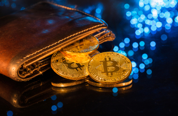 Bitcoin Wallets Holding 10 BTC or More Decrease as Bitcoin Price Struggles to Hold $10,000